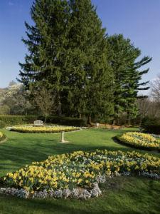 nj garden