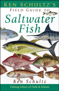 North Carolina Saltwater Fish ID Chart http://www.netstate.com/states/symb/fish/nc_channel_bass.htm